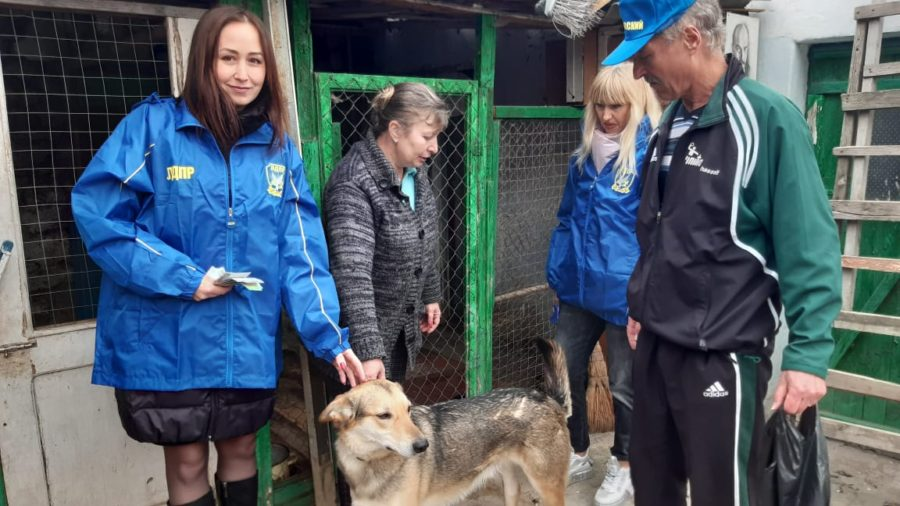 Волонтеры ЛДПР в Севастополе оказали помощь приюту для животных «Барфи»